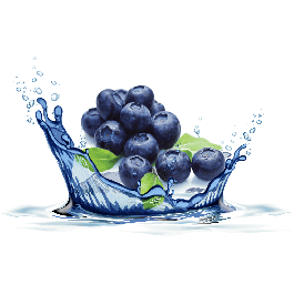 Blueberry (OS)